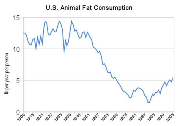 animal fat pic